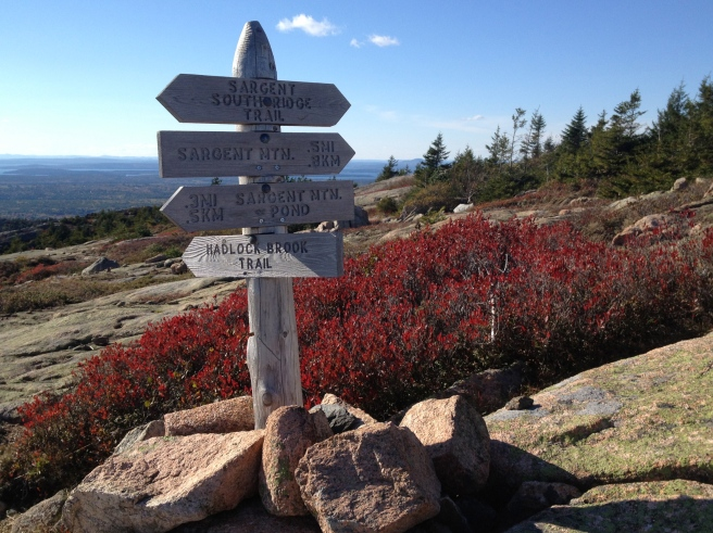 sign post on top of Sargent Mt.