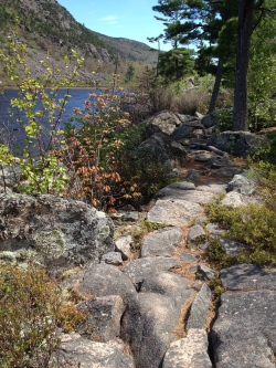 rocky trail by Jordan Pond