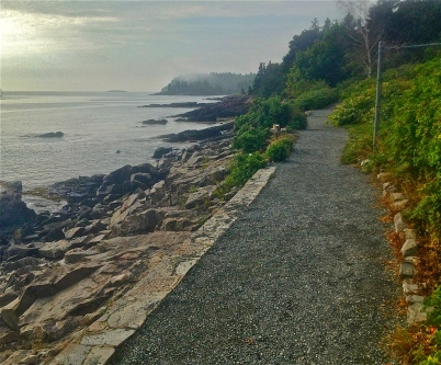 foggy day on the Shore Path, Bar Harbor